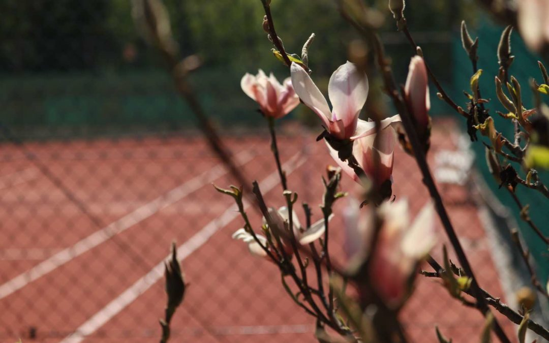 Tennis-Doppel und Mixed Ferienliga am 04.07.2020