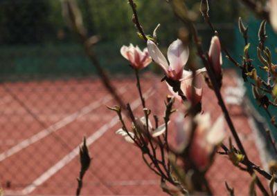UTHC-Tennisanlage-Saisoneroeffnung-04-2020_7400